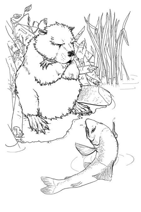 Interior illustration for The Lion and the Aardvark
