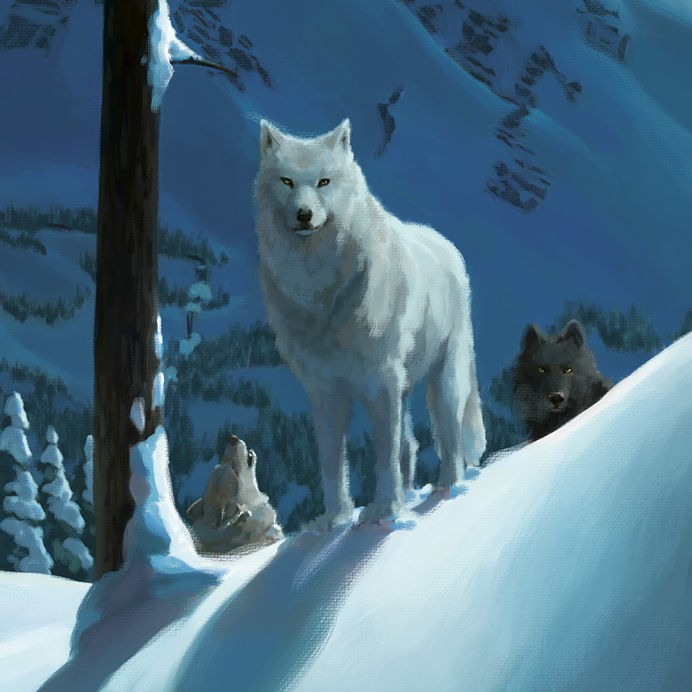 Wolfspell Outside Cover Detail